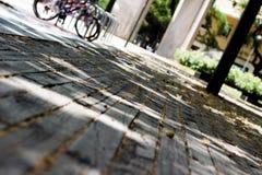 Szczegół nieociosana drewniana podłoga w parku z bliska obraz royalty free