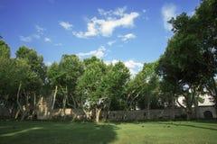 Szczegół Od Topkapi pałac, Istanbuł, Turcja Fotografia Royalty Free