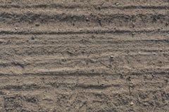 Szczegół opona ślada w piasek pustyni zdjęcia royalty free