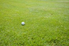 Szczegół piłka golfowa na trawie Obraz Royalty Free