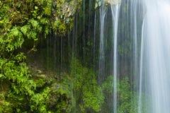 Szczegół siklawa z zieloną paprocią Obraz Royalty Free