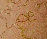 Szczegół skała Fotografia Royalty Free