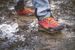 Szczegół trekking buty w błocie Błotniści wycieczkuje buty i pluśnięcie woda Obsługuje chełbotanie w błotnistym i wodnym w wsi Obraz Stock