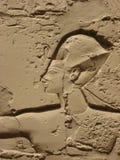 Szczegół ulga na ścianie w Karnak świątyni Obrazy Royalty Free