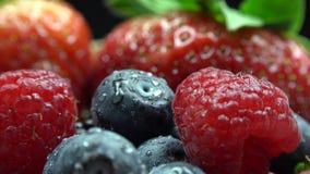 Szczegół z lasowe owoc, malinka, truskawka, czernica, cranberries i zieleń liście, zdjęcie wideo