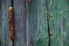 Szczegół zielony drewniany drzwi i ośniedziały zawias obraz royalty free