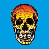 Szczegółowa pociągany ręcznie ilustracja czaszka Grunge wietrzejąca ilustracja Obrazy Royalty Free