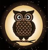 Szczegółowa sowy noc ilustracji