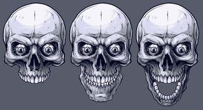Szczegółowe graficzne czarny i biały ludzkie czaszki ustawiać ilustracja wektor