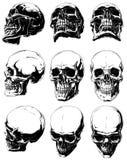 Szczegółowe graficzne czarny i biały ludzkie czaszki ustawiać royalty ilustracja