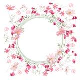 Szczegółowy konturowy wianek z ziele, słodkimi grochami i dzikimi kwiatami odizolowywającymi na bielu, Round rama dla twój projek Obraz Royalty Free