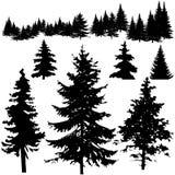 szczegółowy sosnowy sillhouettes drzewo vectoral Fotografia Stock