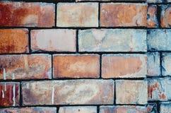 Szczegółowy stary czerwony ściana z cegieł Obrazy Royalty Free