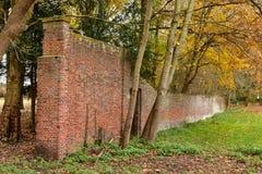 Szczegółowy stary czerwony ściana z cegieł w lesie Zdjęcie Stock