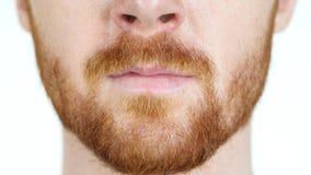 Szczegółowy wizerunek młody człowiek twarzy zakończenie up, Czerwona Włosiana broda Obrazy Royalty Free