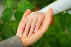 szczegółu ślub Fotografia Stock