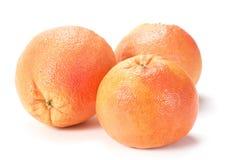 szczegółu grapefruit Fotografia Stock