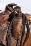 szczegółu konia combery zdjęcie royalty free