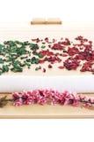 szczegółu masaż przygotowywający ustawianie Zdjęcie Royalty Free