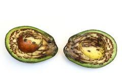 Szczegółu obrazek brzydki przegniły avocado Zdjęcie Royalty Free