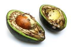Szczegółu obrazek brzydki przegniły avocado fotografia stock