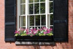 szczegółu pudełkowaty okno Zdjęcie Royalty Free