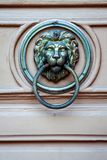 Szczegóły na drzwiowym lwie obrazy royalty free