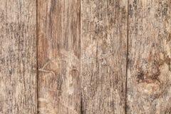 Szczegóły na starym drewnie w ogródzie jest piękny Zdjęcia Stock