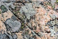 Szczegóły od zbocza góry, tło, tekstura Fotografia Royalty Free