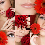 szczegóły piękności Zdjęcia Royalty Free