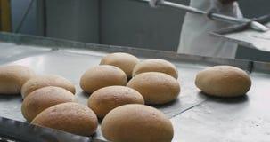 Szczegóły w piekarni fabryce rozładowywali chleb w specjalną półkę, pracownika bielu pracujący specjalny mundur zbiory wideo