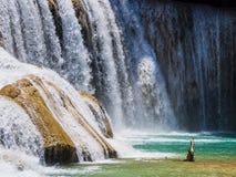 Szczegół Agua Azul siklawy w luksusowym tropikalnym lesie deszczowym Chiapas, Meksyk Obraz Stock