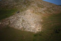 Szczegół góra w lecie Fotografia Royalty Free
