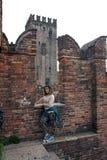 Szczegół Ponte Scaligero Zdjęcie Stock
