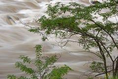 Szczegół Struma rzeka Obraz Royalty Free