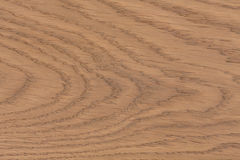 Szczegół tekstura drewno deska Fotografia Royalty Free