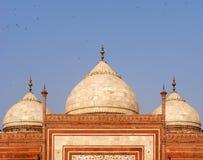 szczegółu taj mahal meczetowy Obraz Royalty Free