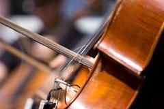 Szczegół violoncello Obraz Royalty Free