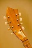 Szczegóły headstock mandolina Fotografia Stock
