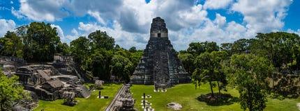 Szczegóły ruiny Tikal Zdjęcia Royalty Free