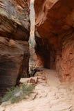 szczelina kanion wędrownej zion toru Zdjęcie Stock