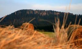 Szczeliniec - montañas del vector Imagen de archivo