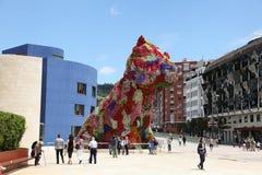 Szczeniak przy Guggenheim muzeum w Bilbao Obraz Royalty Free