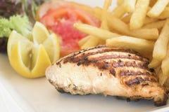 szczerbi się karmowego zdrowego łososiowego stek Obrazy Stock