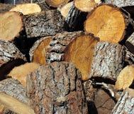 szczerbi się drewno Obraz Royalty Free