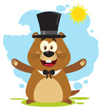 Szczęśliwy świstak kreskówki maskotki charakter Jest ubranym kapelusz I Wita Pod światłem słonecznym Zdjęcie Stock