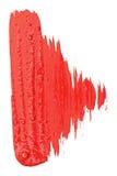 szczotkarska czerwień muska akwarelę Zdjęcia Stock
