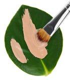 szczotkarski podstawy zieleni liść ciecz nad uderzeniem Zdjęcia Royalty Free
