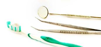szczotkarski ząb Fotografia Stock