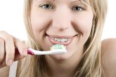szczotkarski ząb Zdjęcie Royalty Free